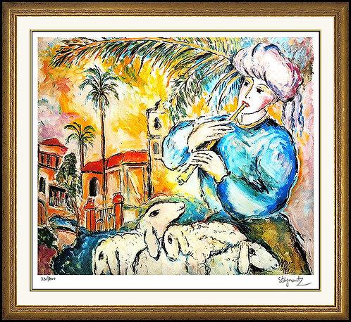 """Jaffa"" by Zamy Stenynovitz"