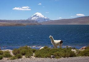 Lago_Chungará_2.jpg