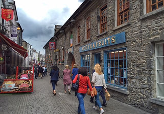 Waterford Private Tours Shore Excursions