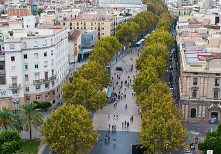 Ramblas Barcelona Private Tours Shore Excursions