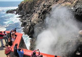 Ensenada Private Tours Shore Excursions