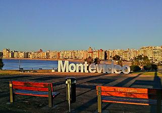Montevideo Private City Tour and Wine Tour Shore Excursion