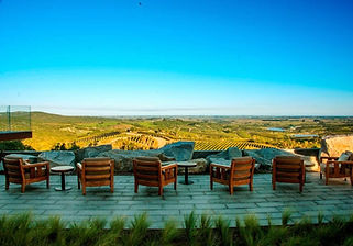 Punta del Este Wine Tour Private Transfer Shore Excursion