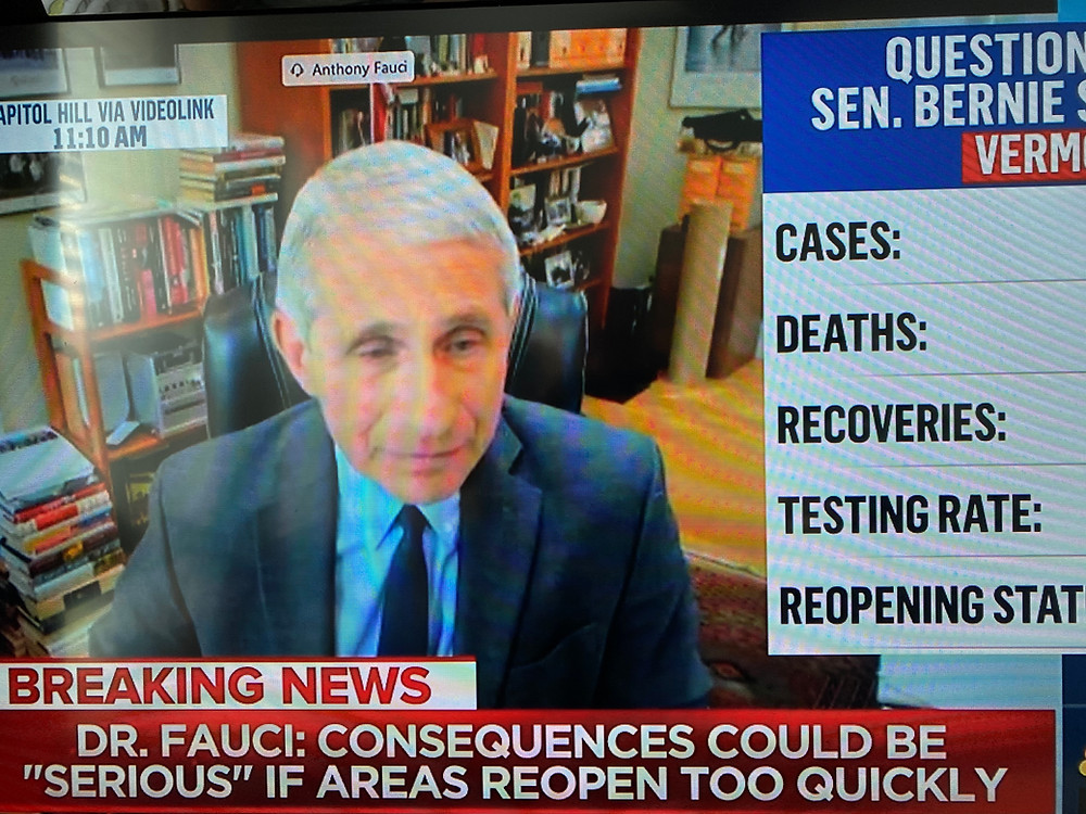 Dr. Fauci testifies