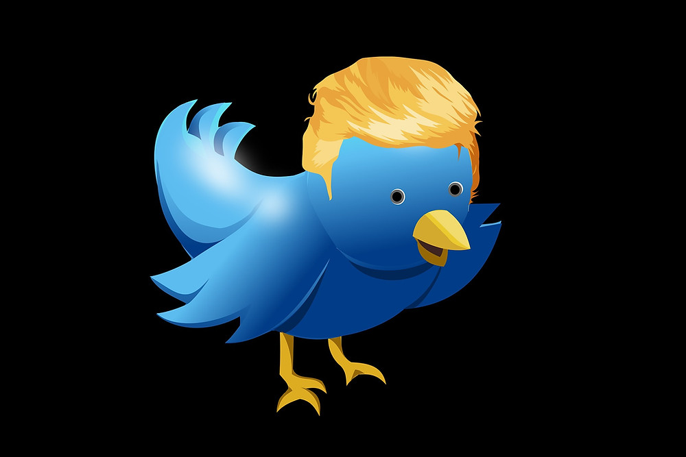 Trump Twitter cartoon