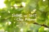 Magic polymorph