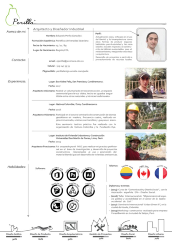 Currículum_Vitae_Perilla_Design-01.jpg