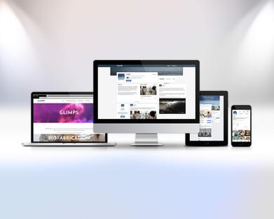 Service and User Experience Design - GLIMPS.bio