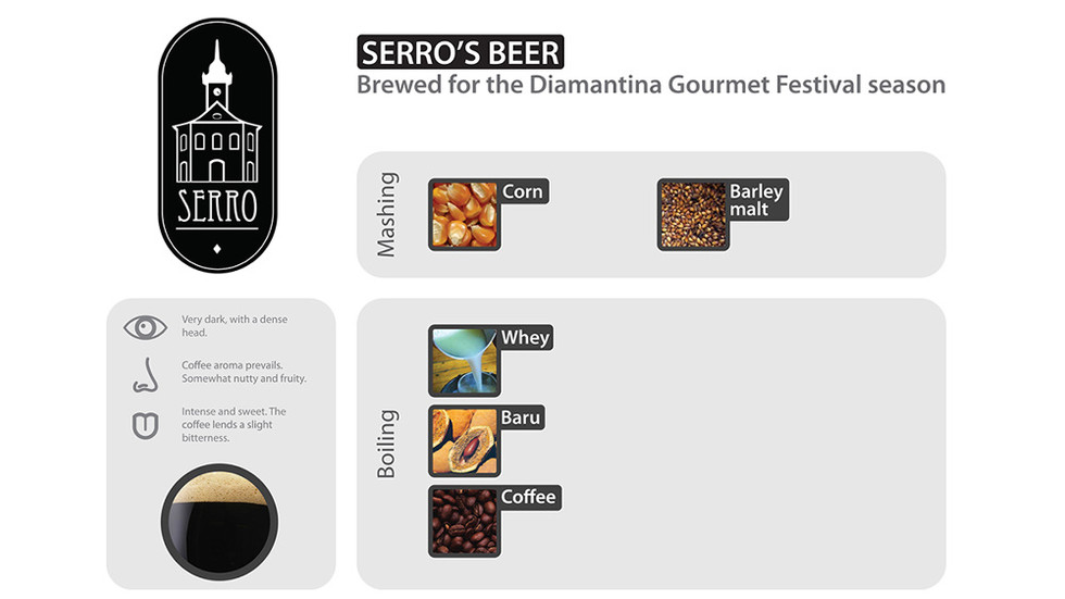 Systemic Design for Sustainability in Beer Brewing in Brazil