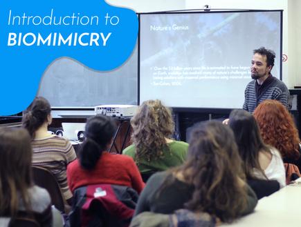 Workshops on Biomimicry - GLIMPS.bio