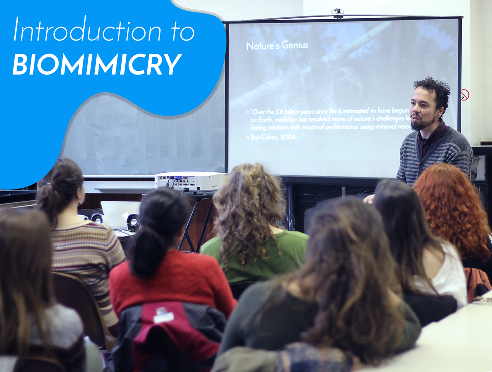 Workshops on Biomimicry