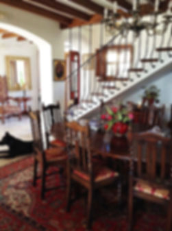 inky in dining room Andalucia