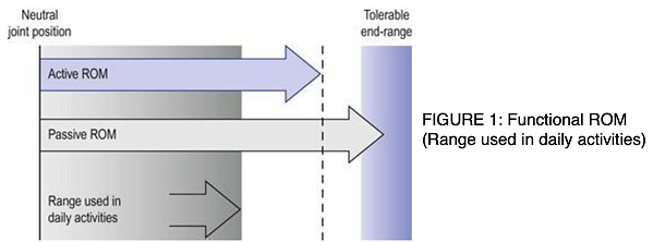 FIGURE 1: Functional ROM (Range used in daily activities)