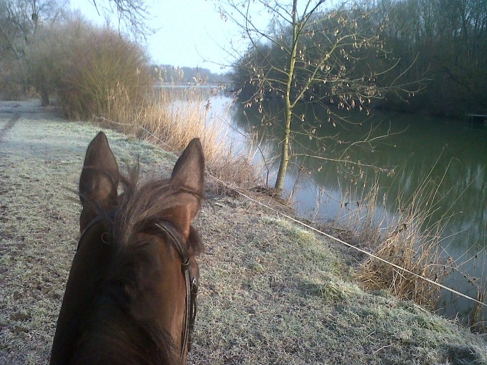 Promenade en hiver Moselle