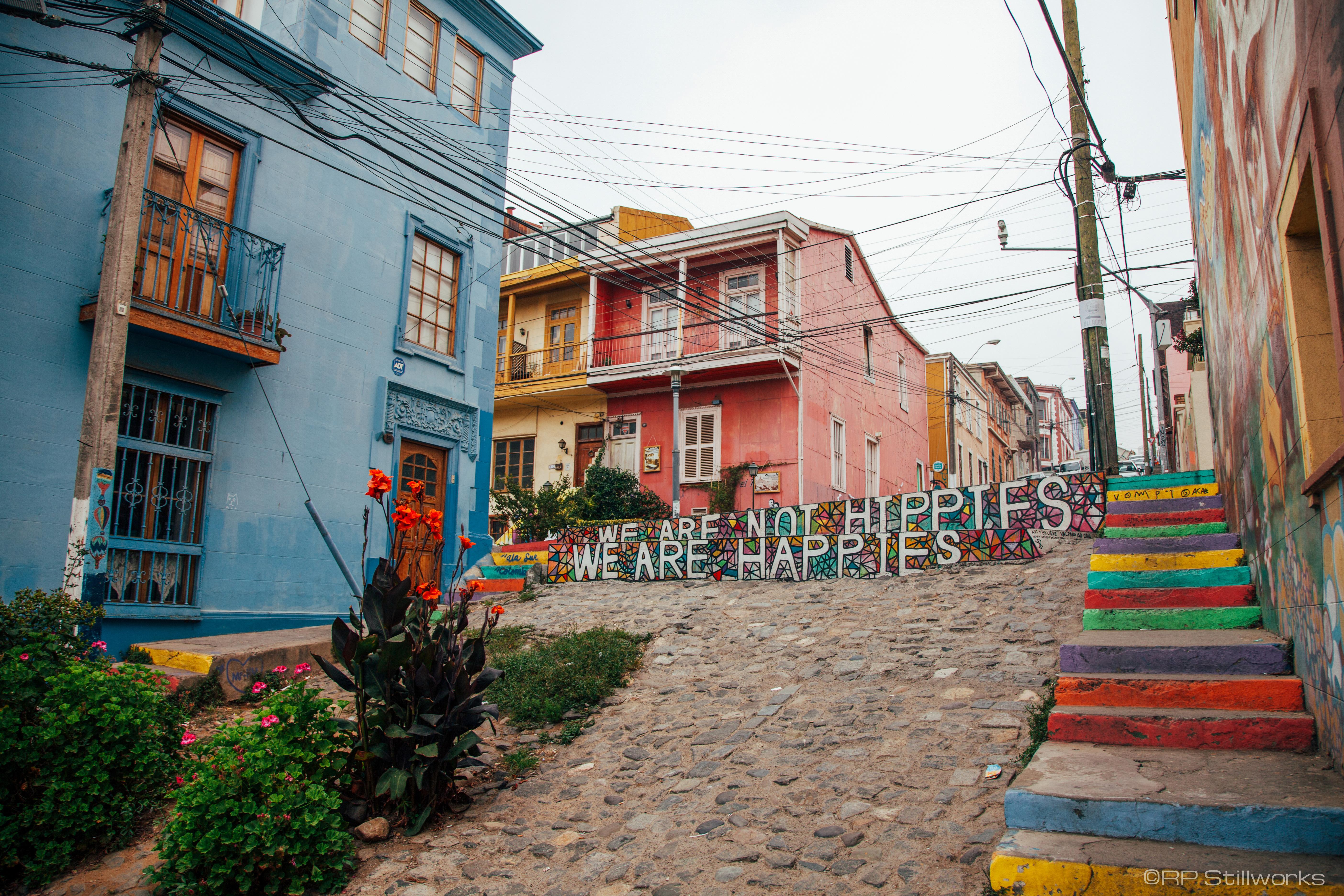 """""""Happies Not Hippies"""""""
