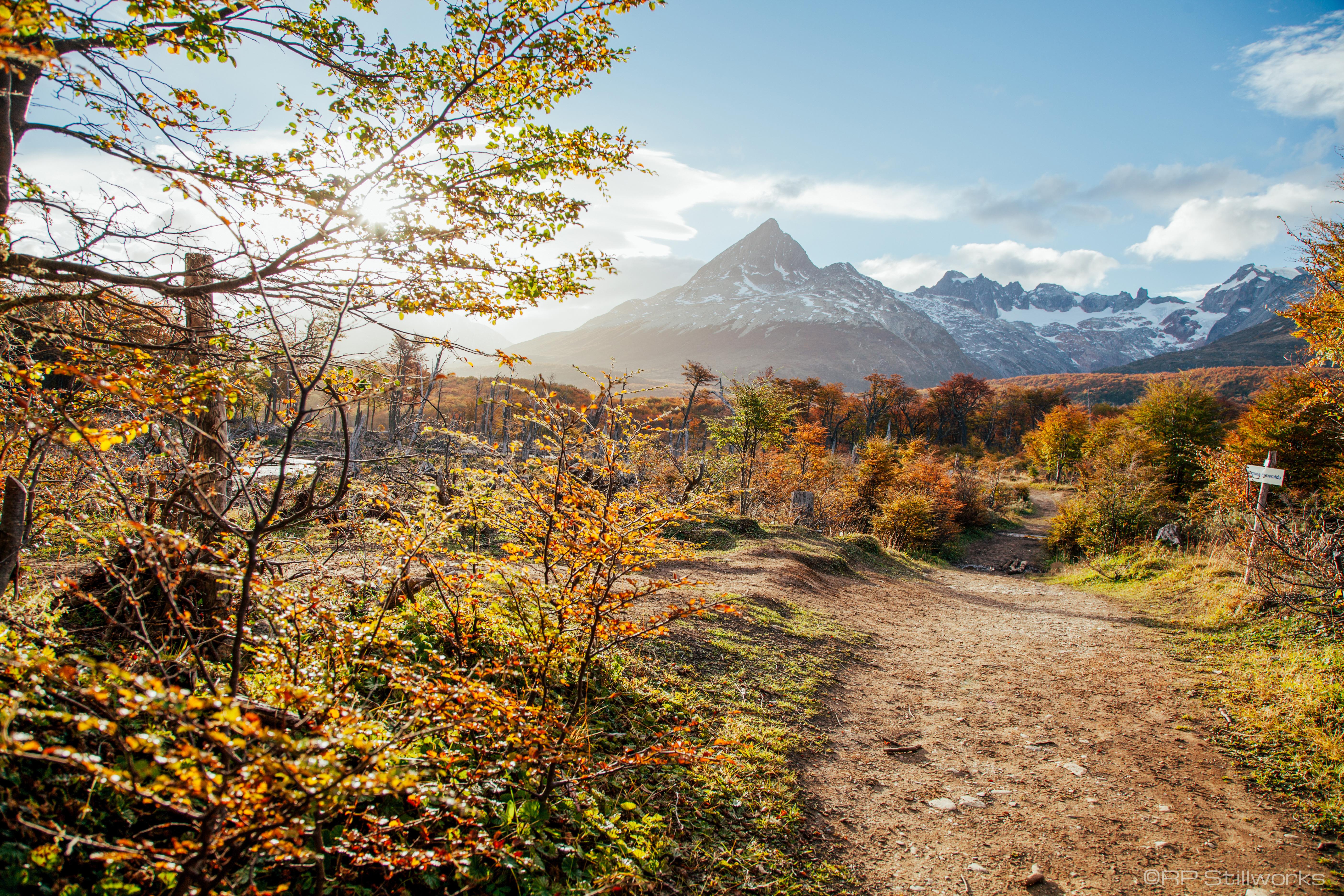"""""""Trekking in Patagonia"""""""