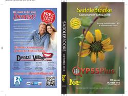 Cover Image for Saddlebrooke
