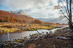 """""""Tierra del Fuego"""""""