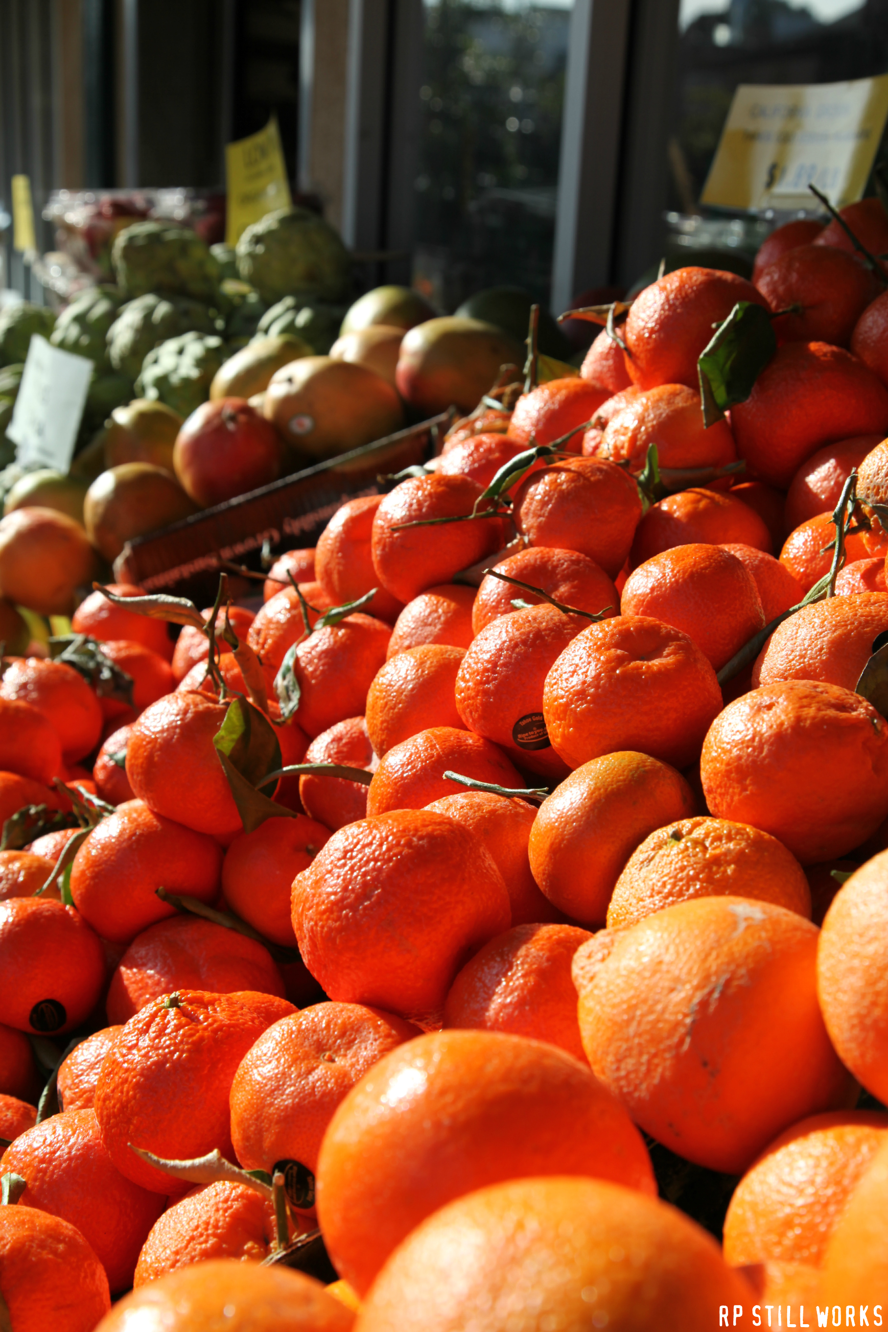 Oranges with Stems