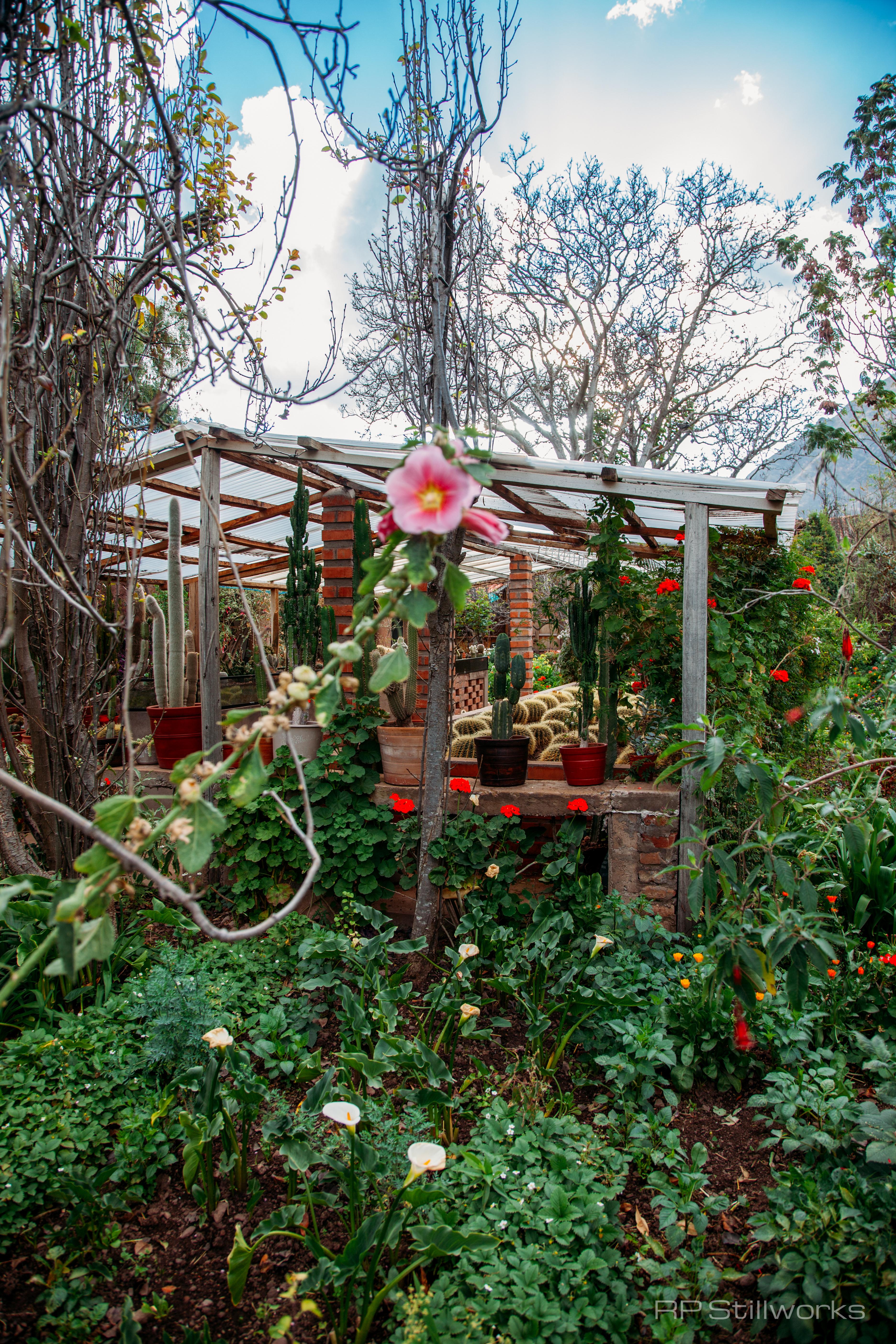 """""""Gardeners' Heaven"""""""