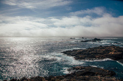 Fog Rolls into Point Lobos