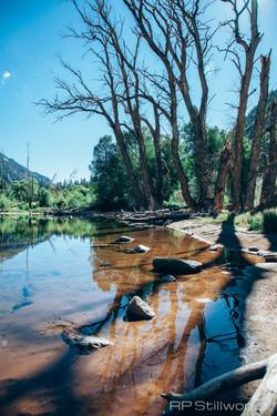 Chalk Pond