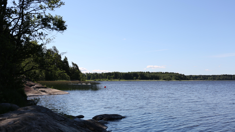 Tur og fiskemuligheter i nærheten