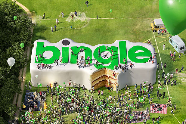 Bingle-Large-rectangle.jpg
