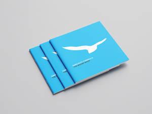 Simplicity Brand Book Cover