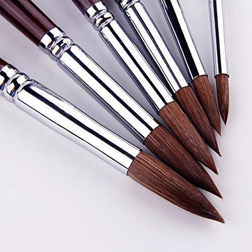 6pcs Round Point Tip Paint Brush Set