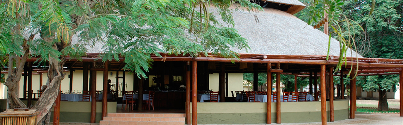 Gorongosa6