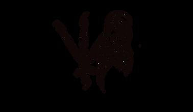Shadefalcon Logo, Revamp, Transparent.pn