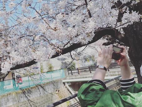 3/22〜3/28の鶴川落語会