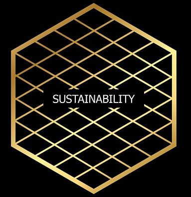 sustainability_edited.jpg