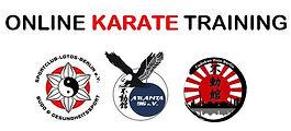Online Karate Training.aktuell.jpg