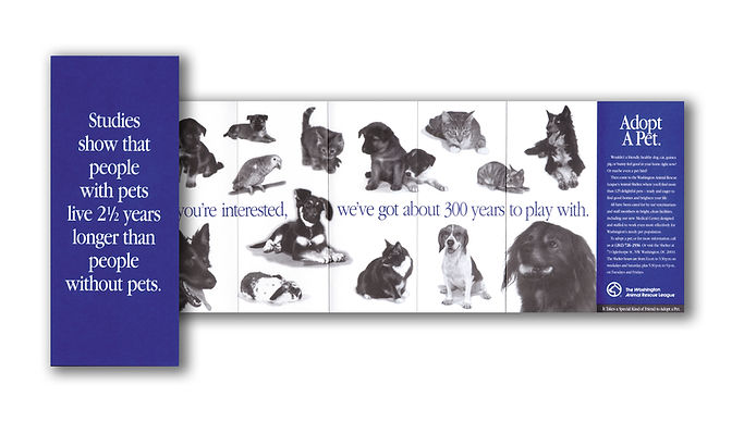 fundraising, animal shelter, direct mail, non-profit, marketing