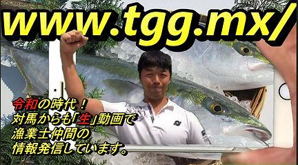 森5.JPG
