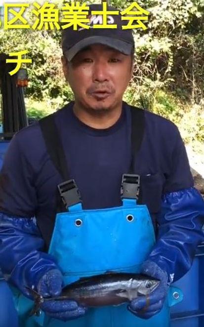 江川マグロ漁.JPG