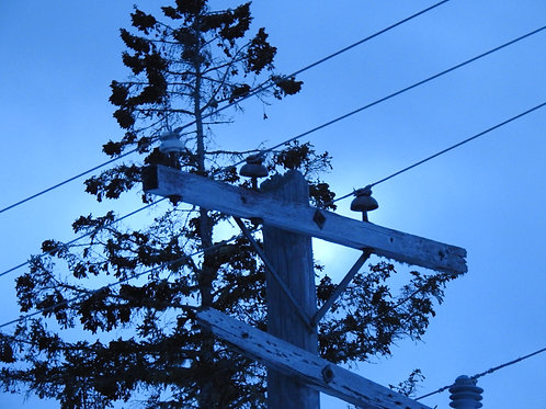 Pole and cables
