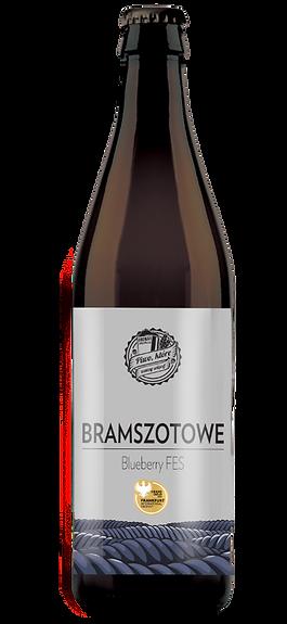 PS_bramszotowe2020%25252520(1)_edited_ed