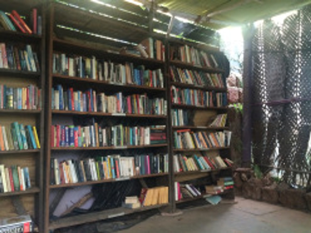 Library in Artjuna