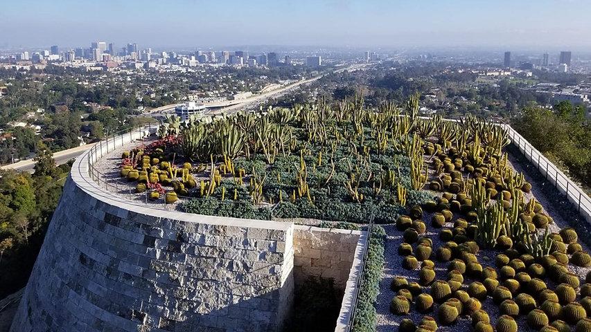 tan_cactus-garden-getty.jpg