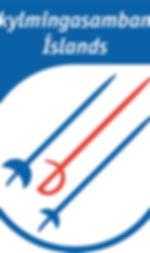 skylmingar_logo.jpg