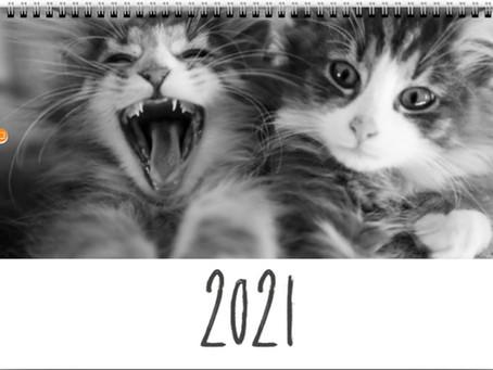 Seidrkatts calander 2021