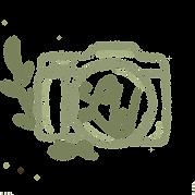 LW logo green 3.png