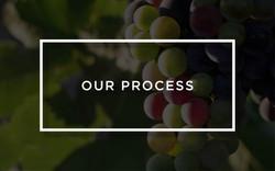Piattelli Vineyards Process