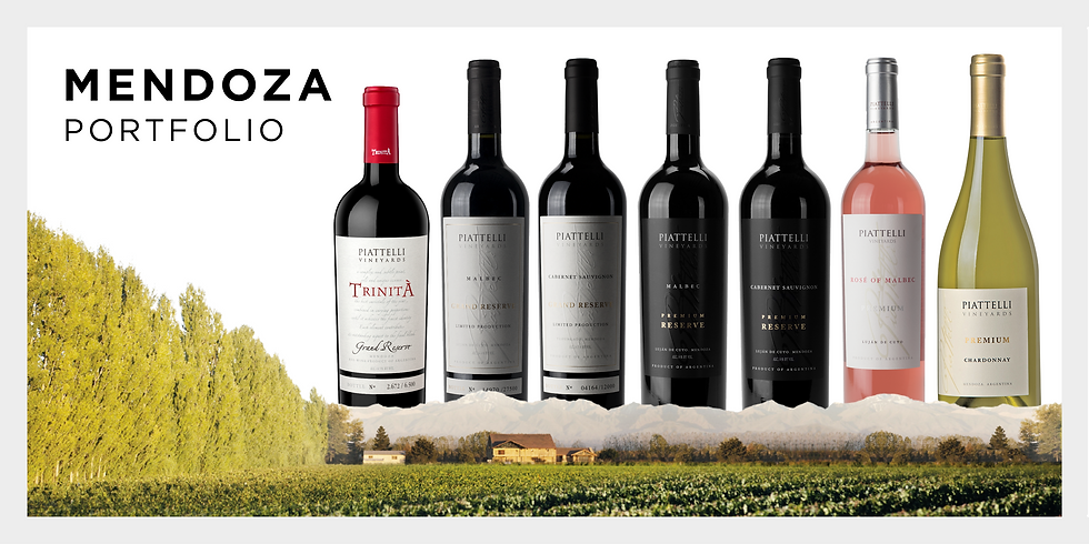 Mendoza Portfolio Piattelli Vineyards Wine