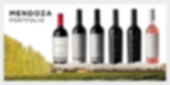 Mendoza Portfolio Piattelli Vineyards Wine