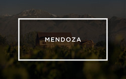 Piattelli Vineyards Mendoza