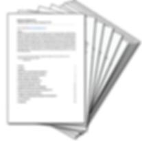 White Paper (BizDNA).png